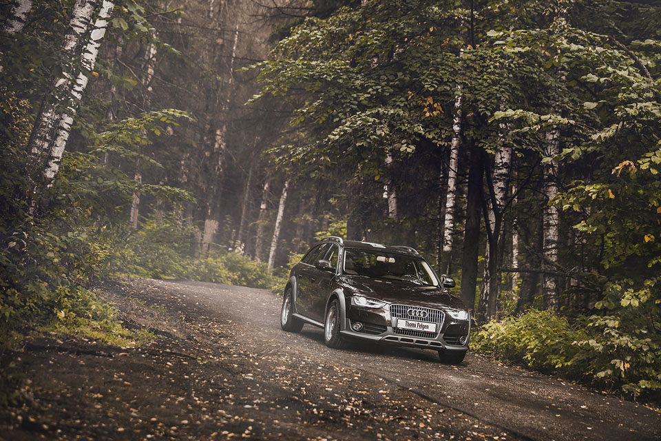 audi A4 allroadb in autumn forest